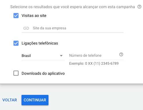 Google ads: selecionar resultados esperados com a campanha